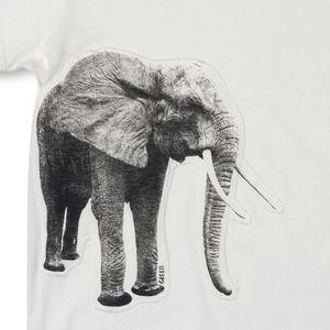 roupa-infantil-camiseta-menino-natureza-elefante-green-by-missako-detalhe-G5706482-020