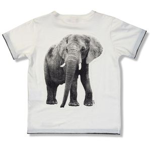 roupa-infantil-camiseta-menino-natureza-branco-detalhe-green-by-missako-costas-G5706854-020