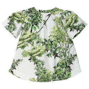 roupa-infantil-vestido-estampado-verde-botanico-toddler-menina-G6201262-600-1
